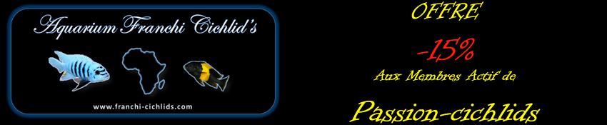Réduction Franchi cichlids Franch11
