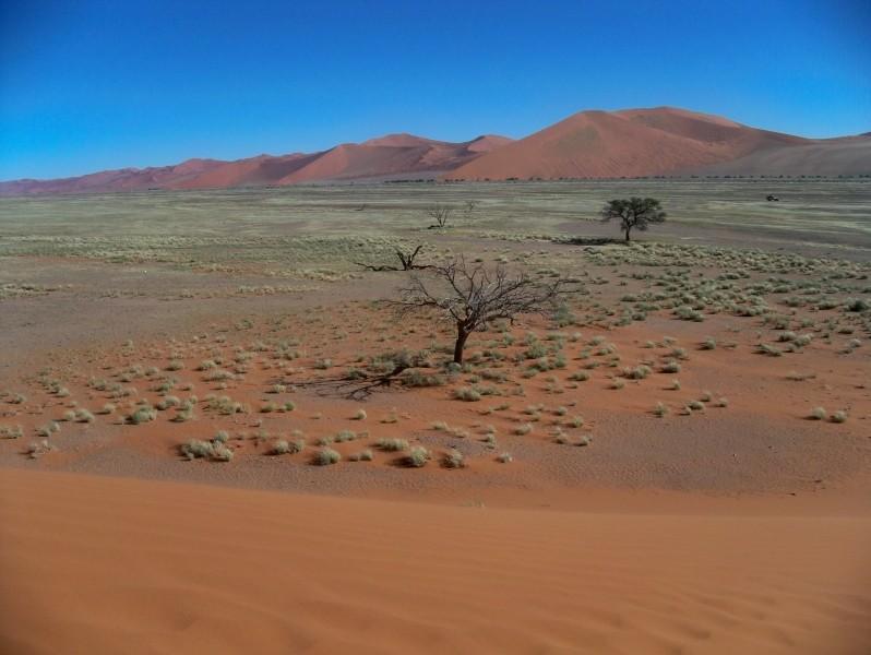 Africa 2011: Sud Africa, Namibia, Zambia su Yamaha XT 660 R e Yamaha XT 660 Z Tenerè Resize84