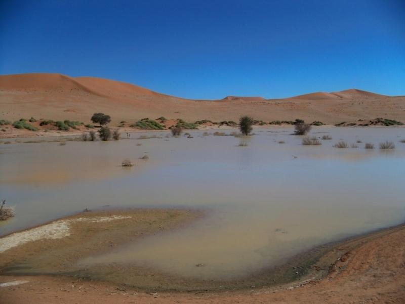 Africa 2011: Sud Africa, Namibia, Zambia su Yamaha XT 660 R e Yamaha XT 660 Z Tenerè Resize90