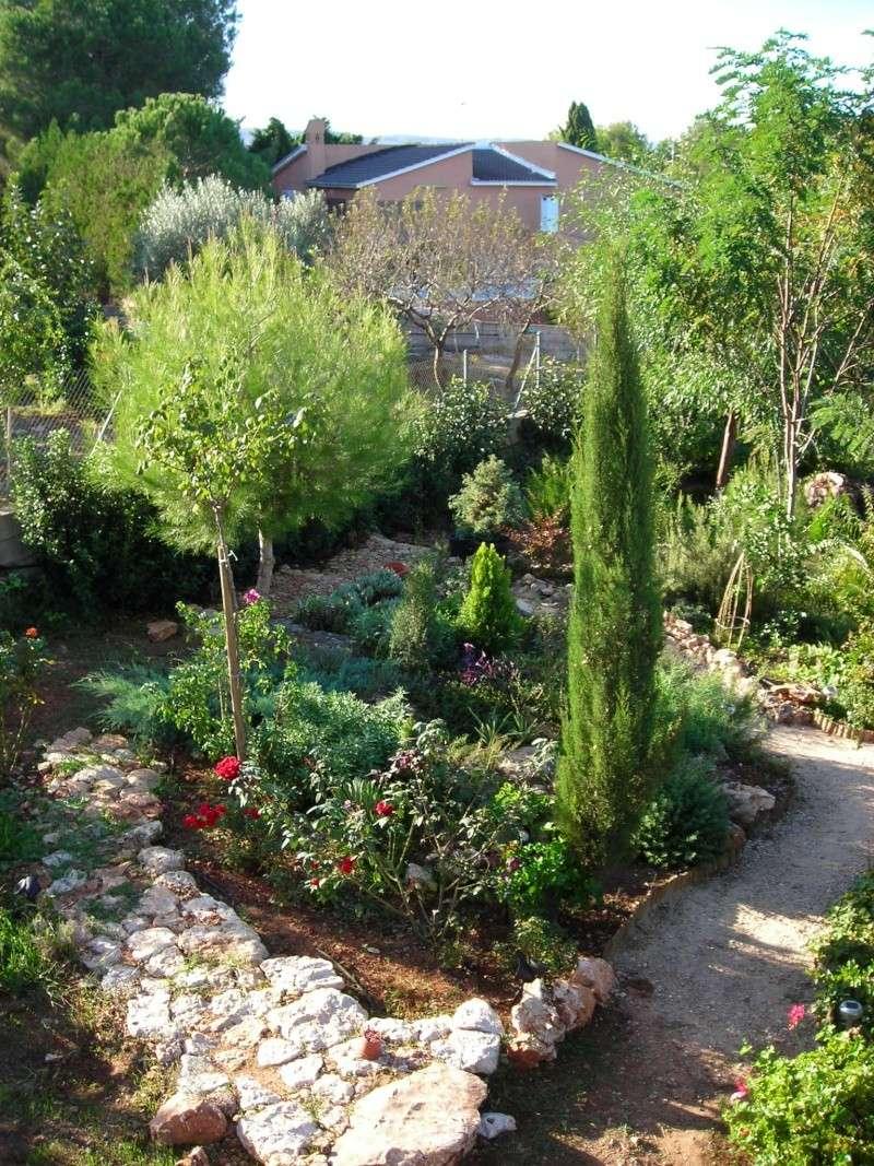 Nuestro jardín de Sa Possessió - Página 5 200_oc10