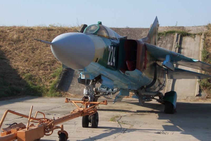 Aeronave militare - Pagina 4 Roias_13