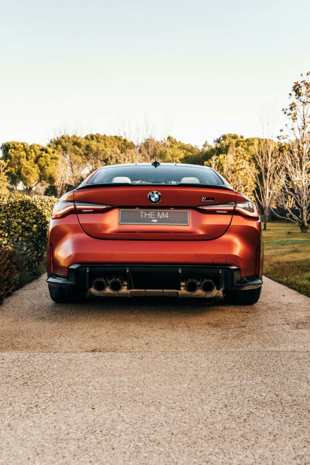 2020 - [BMW] M3/M4 - Page 23 Frozen15
