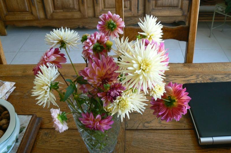 beau bouquet P1030541