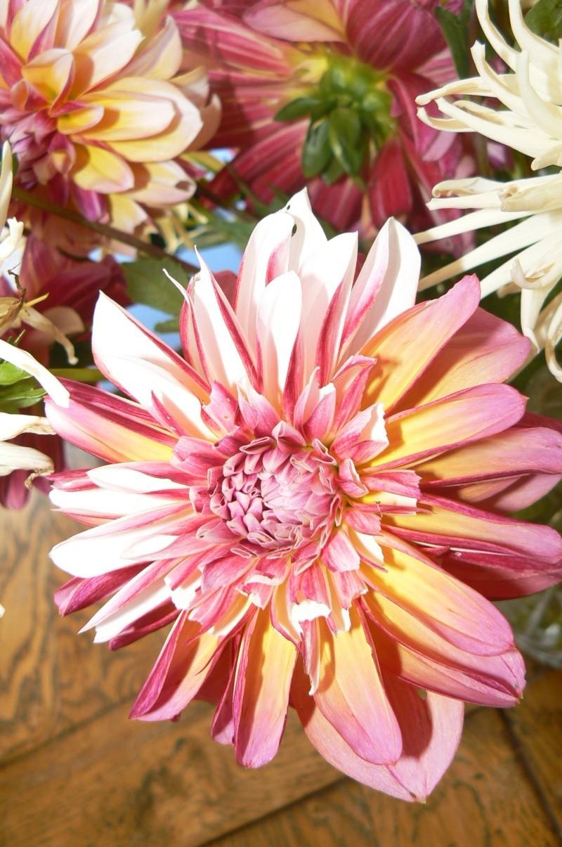 beau bouquet P1030542