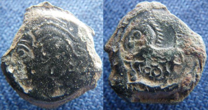 bronze biturige / COL Bituri10