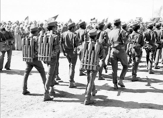 Armée populaire de libération sahraouie (APLS)  29489110