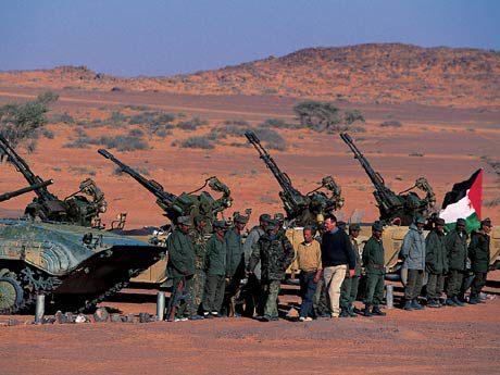 Armée populaire de libération sahraouie (APLS)  30382610