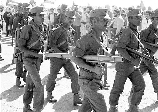 Armée populaire de libération sahraouie (APLS)  31436910