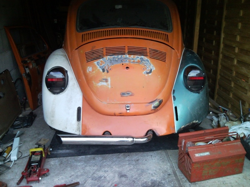 Ma 1303 Orange..... elle reviens de loin Snc00311