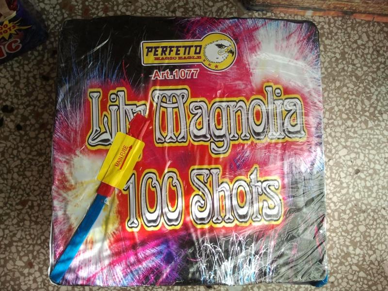 Lily Magnolia 100 colpi Perfetto 2011-110