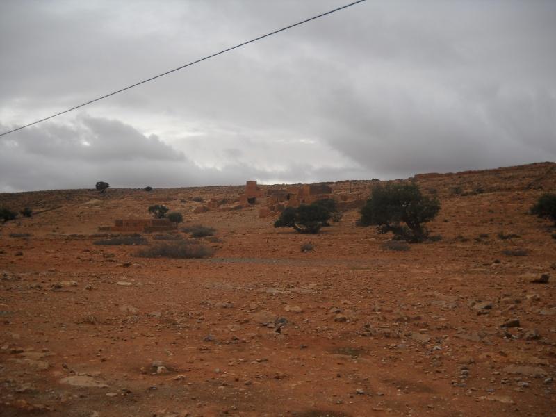 retour maroc 2012 Dscn1713