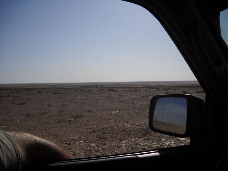 retour maroc 2012 Dscn1823