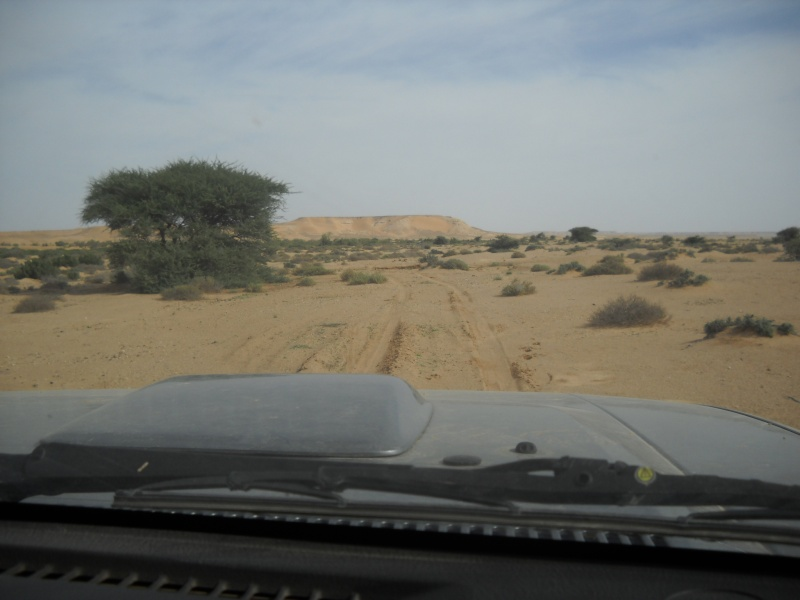 retour maroc 2012 Dscn1832