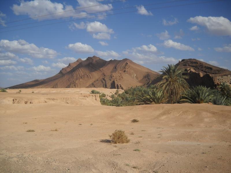 retour maroc 2012 Dscn1916