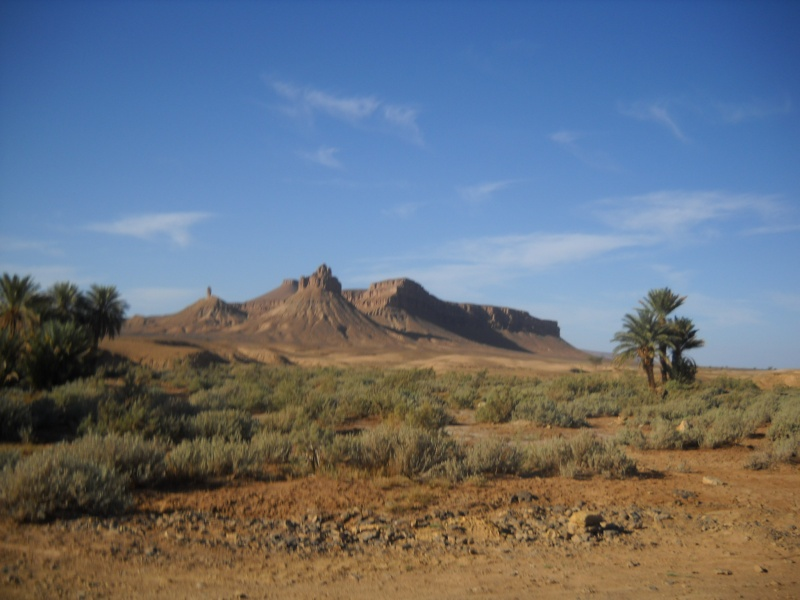 retour maroc 2012 Dscn1924