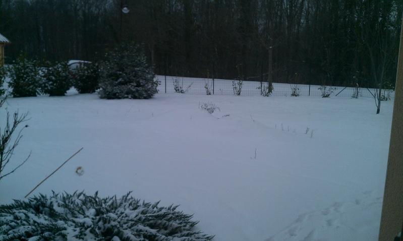 La neige dans le Poitou Charente ( 86 ) Imag0110