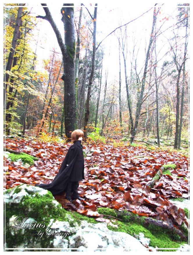 Jules et Cassandra - Page 3 Dscf5517