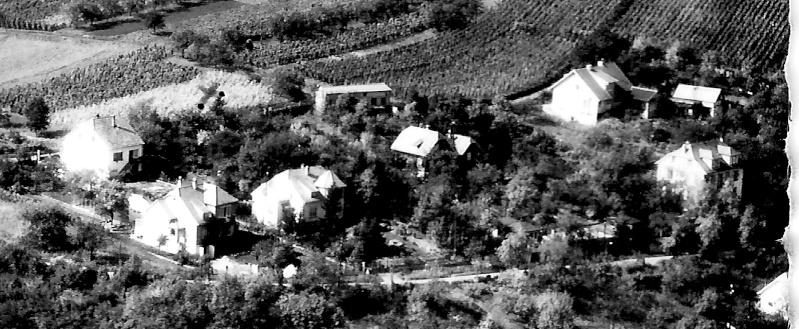 Vues aériennes de Wangen Numari24