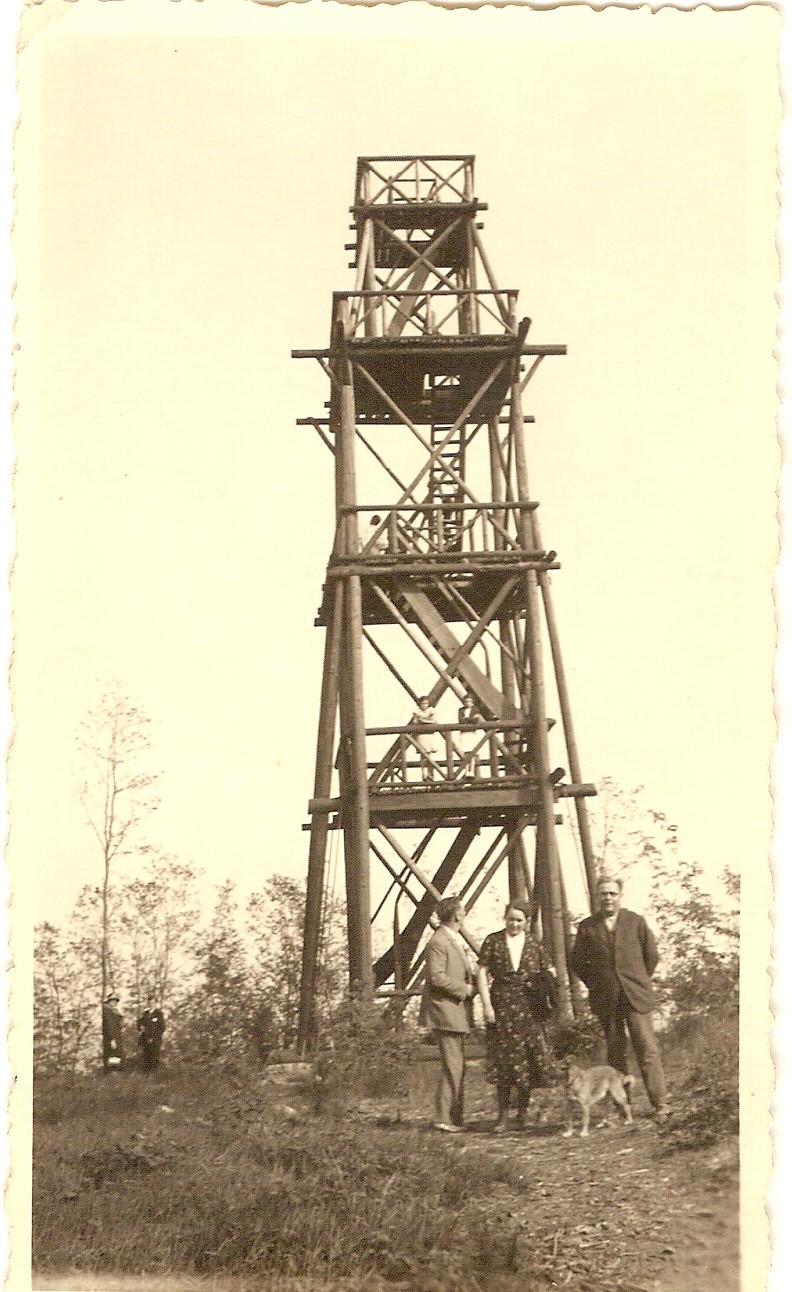 Le belvédère au sommet du Wangenberg Numari28