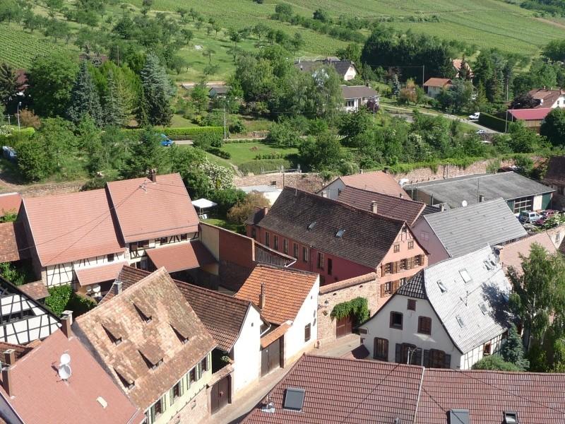 Le chantier de restauration de l'église simultanée de Wangen ... P1100015