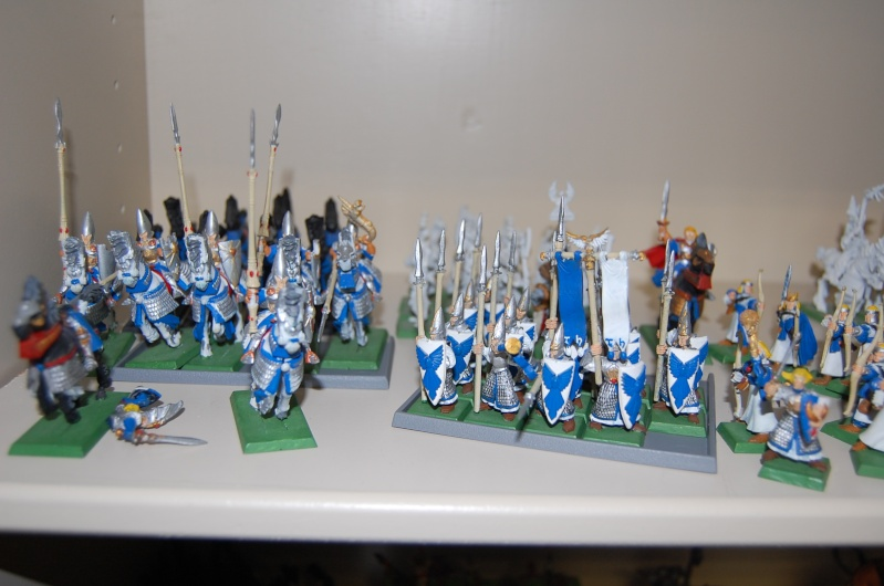 7th edition high elves - Page 2 Dsc_0113