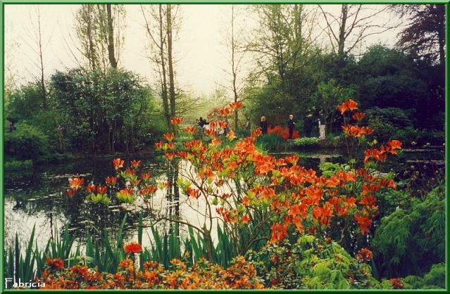Photos de jardins, parcs, forêts... dans le monde - Page 2 Givern11