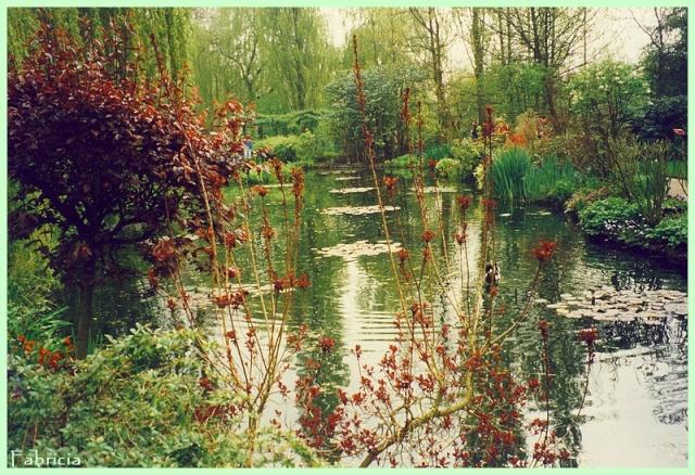 Photos de jardins, parcs, forêts... dans le monde - Page 2 Givern13