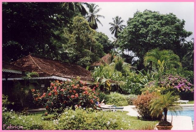 Photos de jardins, parcs, forêts... dans le monde - Page 2 Martin10