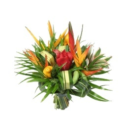 Joyeux anniversaire aux 2 pattes - Année 2012  - Page 5 Fleur010