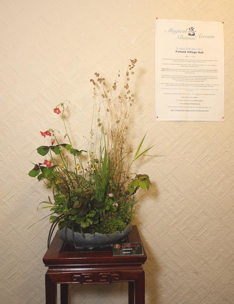 BRISTOL BONSAI SOCIETY'S SHOW,  AUGUST 2011 - a photo report Kusamo11