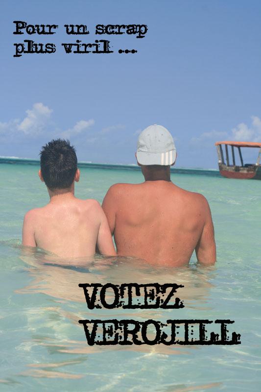 Inspiration mai 2012 : Tootsie présidente!! - Page 5 Votez310