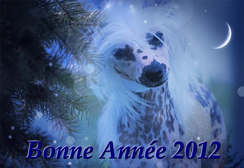 Bonne Année Sans_t23