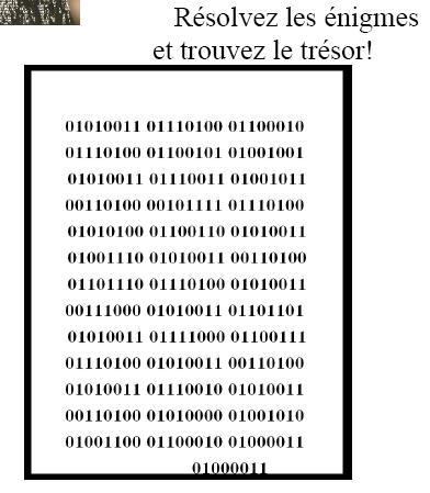 Le Trésor du Lingot Lingot11