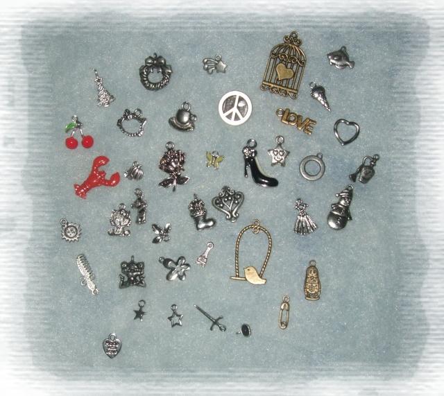 Ma collection de charm's & breloque Dscf8719