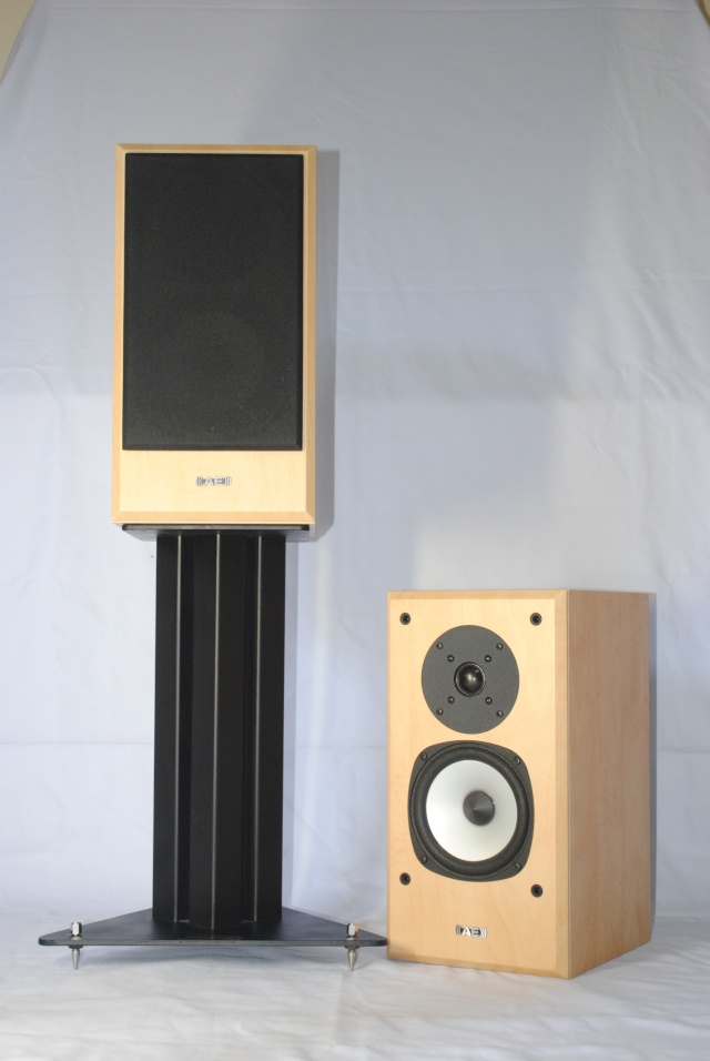 AE Aegis evo one speaker (used) Dsc_3313