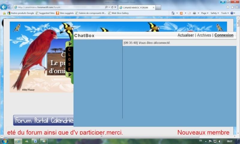 """A propos du """"chat"""" Chat210"""