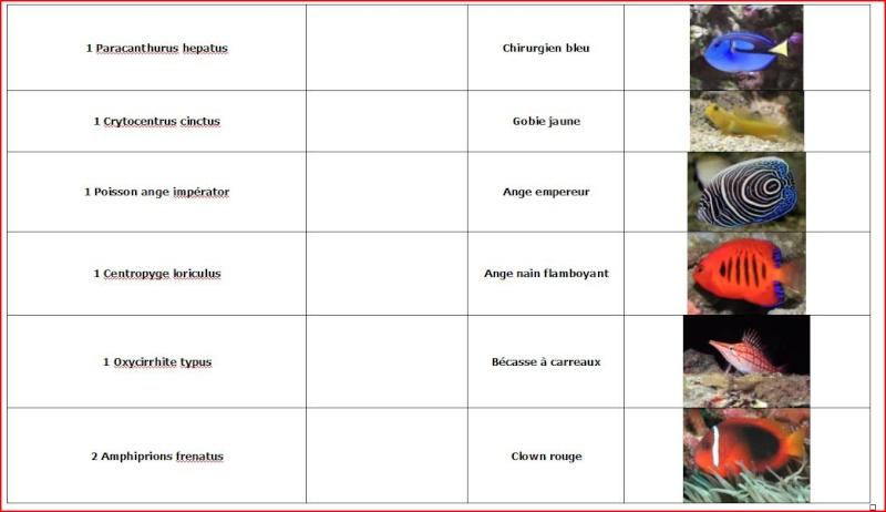 Présentation du bac de 450 litres d'un chti (paprikas) Liste_11