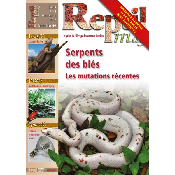 2 articles sur le genre Pogona dans reptilmag Reptil10
