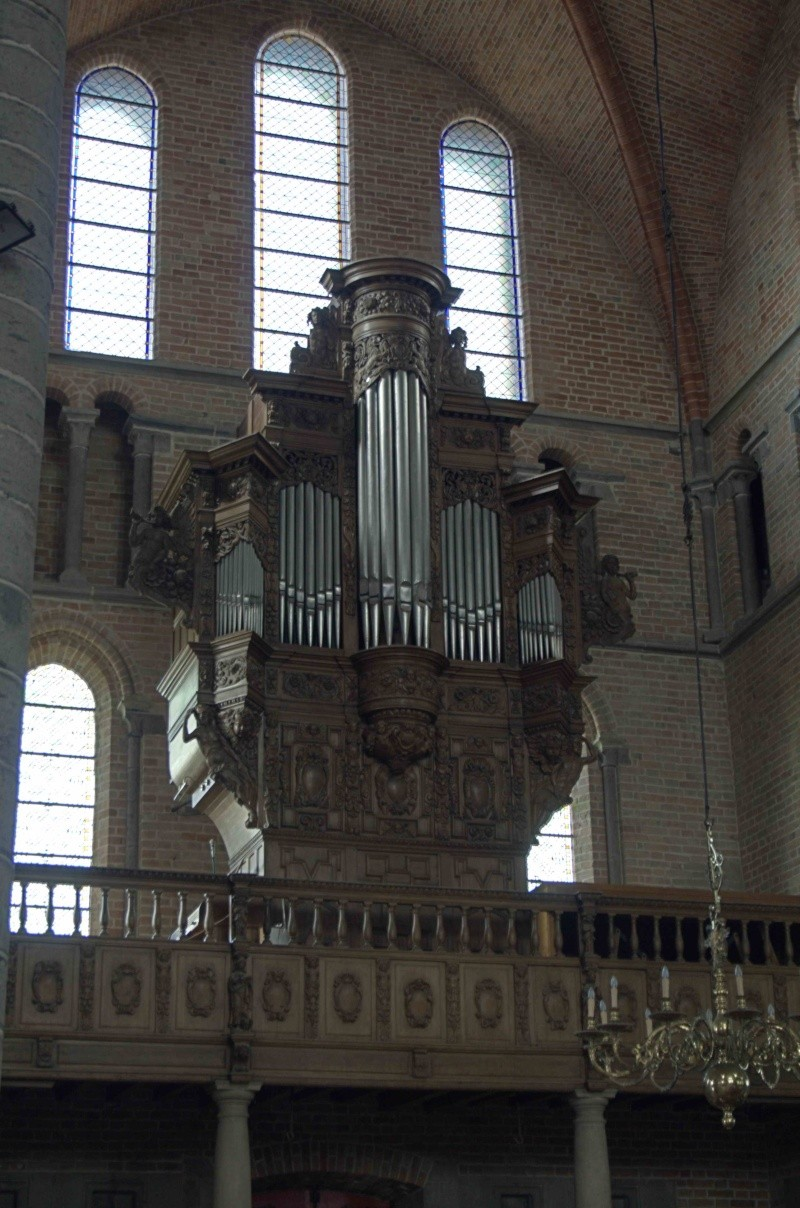 Orgues en Flandres _mg_7313