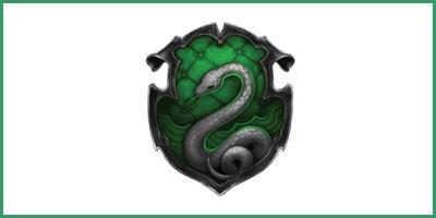 ▬ Quidditch ✖ Serpentard Sans_t18