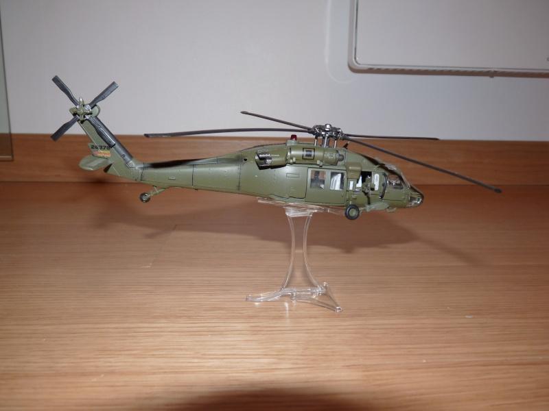 Les miniatures  P1020012