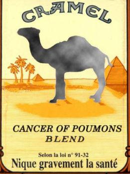 humour en image Camel10