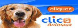 clics_animaux 2014 Clic_a10