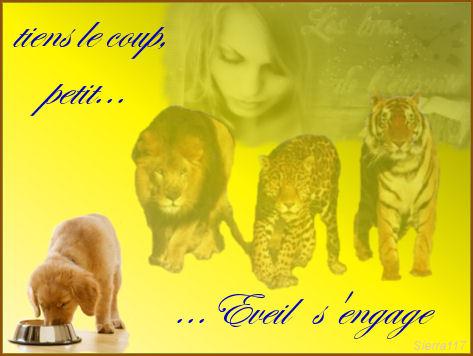 clic animaux Eveil_10