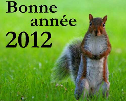BONNE ANNEE 2012 Joyeus10