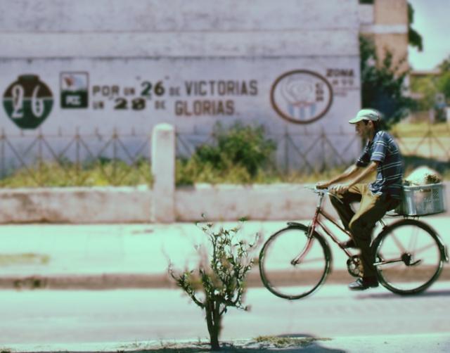 LOS CUBANOS DEL NORTE Y DEL SUR NECESITAN RECONCILIARSE Bicicl10