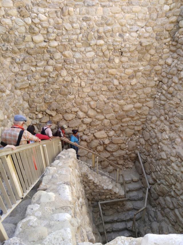 2018 MUS TEEV NTUJ tim DAIM AV NTSHIAB (Israël) Img_2039