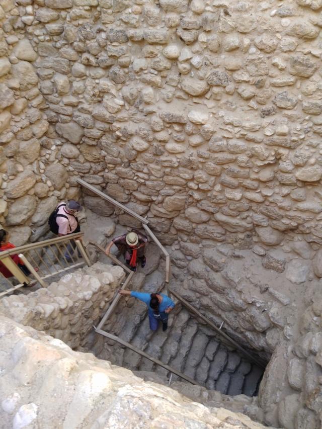 2018 MUS TEEV NTUJ tim DAIM AV NTSHIAB (Israël) Img_2040