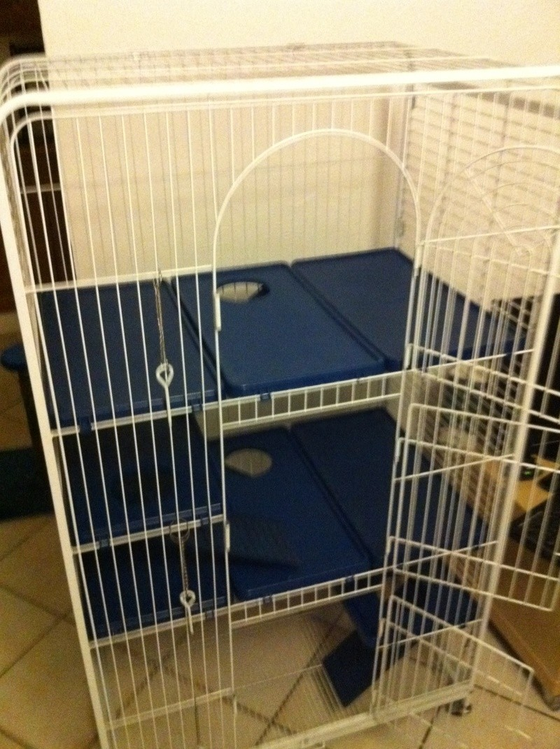[Var 83] Vends Cage PERFECT Img_0713