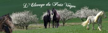 17 mars 2012 - ITI et Qualification loisirs Villers-la-Montagne 54 MAJ P1 Bannia12
